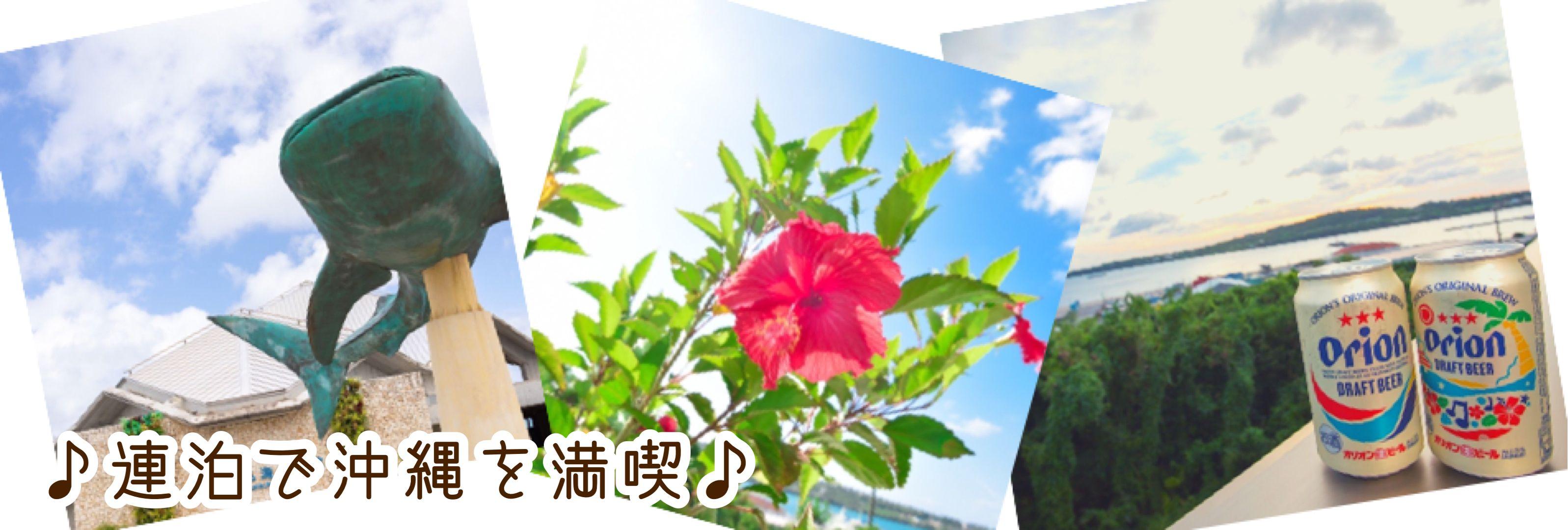 沖縄県本部町/ペンション/美ら海水族館まで車で約13分/Villa・Charme(ヴィラシャルム)
